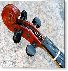 Antique Violin Acrylic Print by Pamela Walrath
