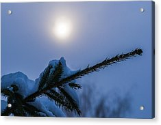 Antisipation Of New Year Acrylic Print by Alexander Senin