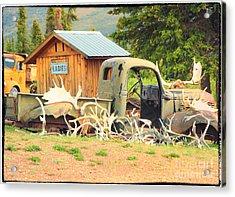 Antlers In The Yukon Acrylic Print
