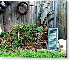 Any Old Iron Acrylic Print by Richard Reeve