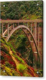 Anyone Seen The Bridge Acrylic Print by Sharon Costa