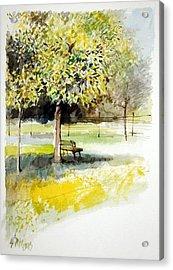 Autumn Shadows Acrylic Print by Lorand Sipos