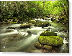 Appalachian Spring Stream Acrylic Print by Phyllis Peterson
