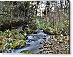 Appalachian Stream 3 Acrylic Print by Ryan Phillips