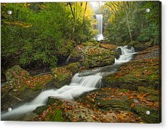 Appalachian Stream Acrylic Print