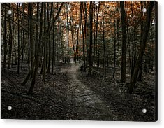 Appalachian Trail Acrylic Print by Anthony Fields