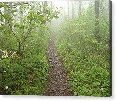 Appalachian Trail Acrylic Print by James Potts