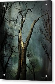 Appeal To The Sky Acrylic Print by Cynthia Lassiter
