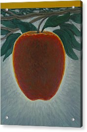 Apple 2 In A Series Of 3 Acrylic Print by Don Young