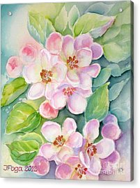 Apple Blossoms 1 Acrylic Print