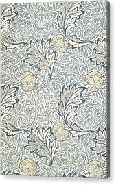 Apple Design 1877 Acrylic Print