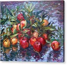 Apple Harvest At Violas Garden Acrylic Print