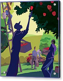 Apple Pickers Acrylic Print by Clifford Faust