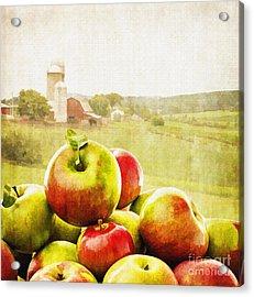 Apple Picking Time Acrylic Print