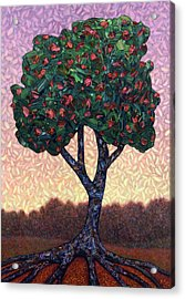 Apple Tree Acrylic Print by James W Johnson