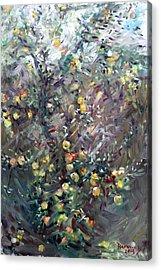 Apple Tree  Acrylic Print by Ylli Haruni
