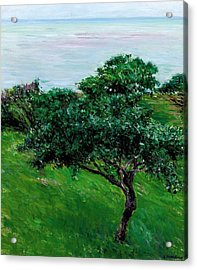 Apple Trees By The Sea Trouville Acrylic Print by Gustave Caillebotte