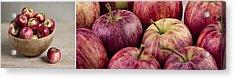 Apples 01 Acrylic Print by Nailia Schwarz
