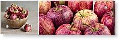 Apples 02 Acrylic Print by Nailia Schwarz