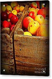 Apples In Old Bin Acrylic Print by Miriam Danar