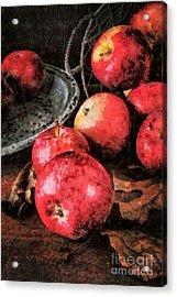 Apples Still Life Cezanne Style Acrylic Print by Edward Fielding