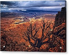 Acrylic Print featuring the photograph Approaching Storm by Priscilla Burgers
