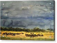 Approaching Storms In Tarangire Tanzania Acrylic Print by James Nyika