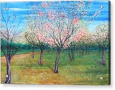 Apricot Orchard Acrylic Print