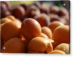 Apricots Acrylic Print by Terry Horstman