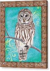 Aqua Barred Owl Acrylic Print by Debbie DeWitt
