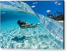 Aqua Dive Acrylic Print by Sean Davey