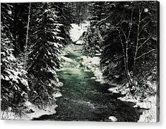 Aqua Stream Acrylic Print by Michele Richter