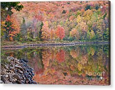 Acrylic Print featuring the photograph Aquarelle by Charles Kozierok