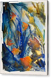 Aquarium 2 Archived Work Acrylic Print by Charlie Spear