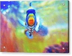 Aquarium Art 18 Acrylic Print by Steve Ohlsen