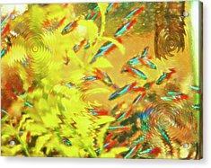 Aquarium Art 7 Acrylic Print by Steve Ohlsen