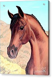 Arabian Beauty Acrylic Print