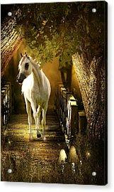 Arabian Dream Acrylic Print