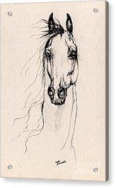 Arabian Horse Drawing 25 Acrylic Print by Angel  Tarantella