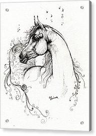 Arabian Horse Drawing 8 Acrylic Print by Angel  Tarantella