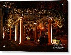 Arbor Glow Acrylic Print
