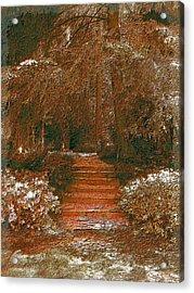 Arbor Steps Acrylic Print by Tim Allen