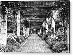 Arbor Walkway Acrylic Print by Phyllis Peterson