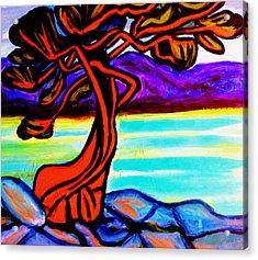 Arbutus Tree 1 Acrylic Print