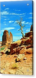 Arches Lonely Tree Acrylic Print by Marty Koch