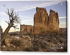 The Organ And The Tower Of Babel Acrylic Print