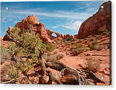 Arches National Park Acrylic Print by Donald Fink