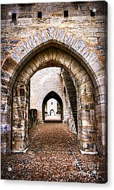 Arches Of Valentre Bridge In Cahors France Acrylic Print by Elena Elisseeva
