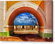 Arching Acrylic Print by Kathi Isserman