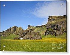 Arctic Meadow Acrylic Print